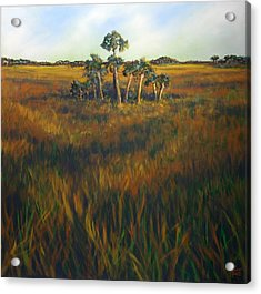 Ten Palms Acrylic Print by Michele Hollister - for Nancy Asbell