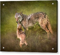 Tender Moment Acrylic Print