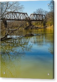 Tennessee Backwater Acrylic Print by Ron Dubin