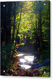 Tennessee Spring Acrylic Print by Brittany Horton