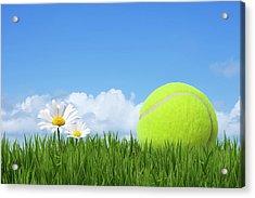Tennis Ball Acrylic Print by Andrew Dernie