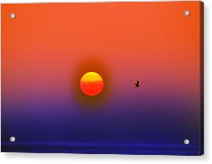 Tequila Sunrise Acrylic Print by Bill Cannon