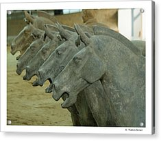 Acrylic Print featuring the photograph Terra Cotta Horses by R Thomas Berner