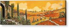 terra di Siena Acrylic Print by Guido Borelli