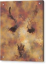 Terra Acrylic Print by Rora