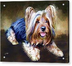 Terrier Acrylic Print by Ellens Art