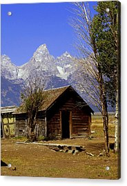 Teton Cabin Acrylic Print by Marty Koch