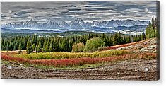 Acrylic Print featuring the photograph Tetons by John Gilbert