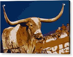Texas Bevo Color 16 Acrylic Print