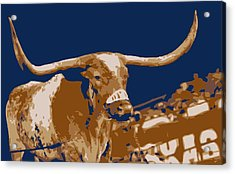 Texas Bevo Color 6 Acrylic Print