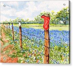 Texas Bluebonnets Boot Fence Acrylic Print