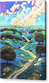 Texas Hill Country Spring Acrylic Print