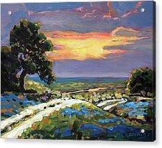 Texas Hill Country Sunset Vista Acrylic Print