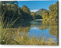 Texas Hill Country - The Frio River Acrylic Print
