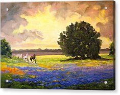 Texas Horses And Bluebonnets Acrylic Print by Connie Tom