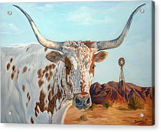 Texas Longhorn Acrylic Print by Jana Goode