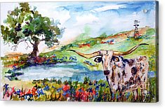 Texas Longhorn Landscape With Bluebonnets And Indian Paintbrush Acrylic Print