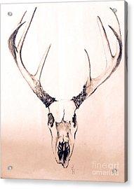 Texas Mount Deer Acrylic Print