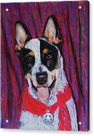 Texas Ranger Acrylic Print by Billie Colson
