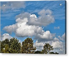 Acrylic Print featuring the photograph Texas - Reach For The Sky.   by Ray Shrewsberry