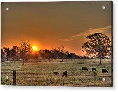 Acrylic Print featuring the photograph Texas Sunrise by Barry Jones