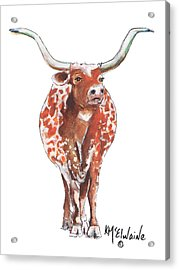 Texas Longhorn Taking The Lead Watercolor Painting By Kmcelwaine Acrylic Print