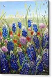 Texas Tangle Acrylic Print