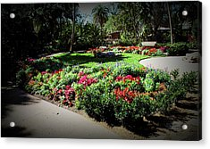 Acrylic Print featuring the photograph Texture Drama Garden Park by Aimee L Maher Photography and Art Visit ALMGallerydotcom