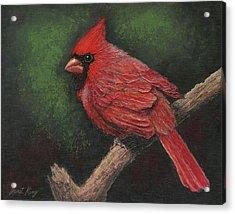 Textured Cardinal Acrylic Print