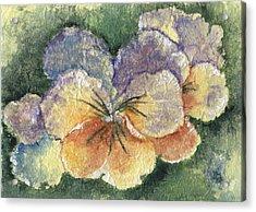 Textured Pansy Acrylic Print by Marsha Elliott