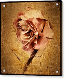 Textured Rose Acrylic Print by Jessica Jenney