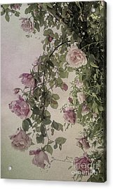 Textured Roses Acrylic Print