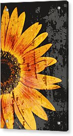 Textured Sunflower Acrylic Print by Cathie Tyler