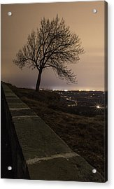 Thacher Park Twilight Acrylic Print