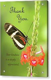 Thank You - Butterfly Acrylic Print