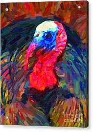 Thanksgiving Turkey Acrylic Print by Wingsdomain Art and Photography
