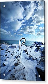 Acrylic Print featuring the photograph That One Weird Thing by Phil Koch