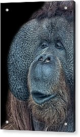 That Oooh Moment Acrylic Print