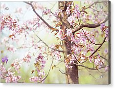 Acrylic Print featuring the photograph That Tender Joyful Spring by Jenny Rainbow