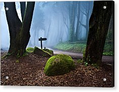 Acrylic Print featuring the photograph That Way by Jorge Maia