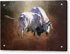 Acrylic Print featuring the photograph That's A Lot Of Bull by Donna Kennedy
