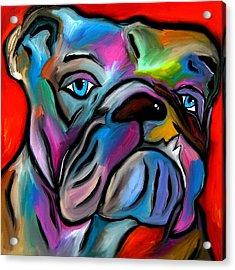 That's Bull - Abstract Dog Pop Art By Fidostudio Acrylic Print by Tom Fedro - Fidostudio