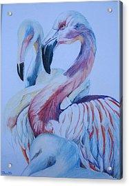 The 3 Flamingos Acrylic Print