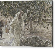 The Accursed Fig Tree Acrylic Print by Tissot