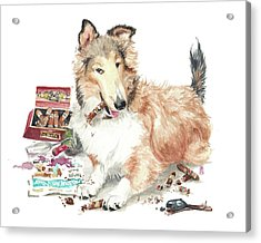 The Aficiondo Acrylic Print by Debra Jones