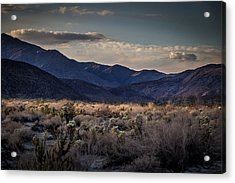 Acrylic Print featuring the photograph The American West by Peter Tellone
