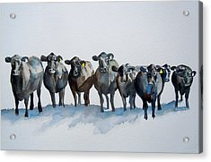 The Angus Eight Acrylic Print