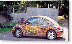 The Animal Parks New Theme Car 1 Acrylic Print by Lanjee Chee