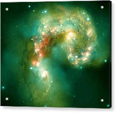 The Antennae Galaxies Acrylic Print by American School