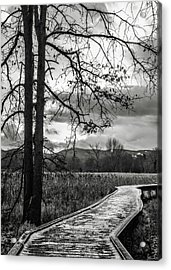 The Appalachian Trail Acrylic Print by Eduard Moldoveanu